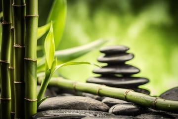 Panel Szklany Bambus zen stones