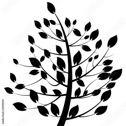 drzewo-galaz