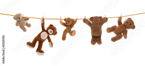 Lustige Gruppe von Teddy Bären isoliert auf einer Wäscheleine.  #83128385