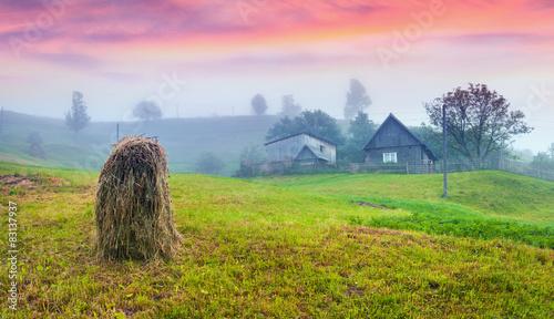 Fényképezés  Haymaking in a Carpathian village.