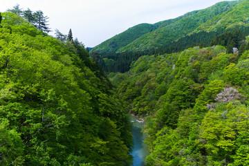Fototapeta na wymiar 小安峡の渓谷