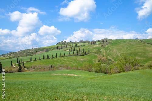 Poster Northern Europe Toskana Landschaft