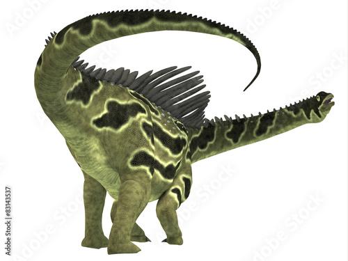 Photo  Agustinia Dinosaur Tail