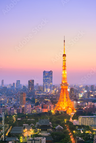 Spoed Foto op Canvas Tokyo Aerial View of Tokyo City and Tokyo Tower