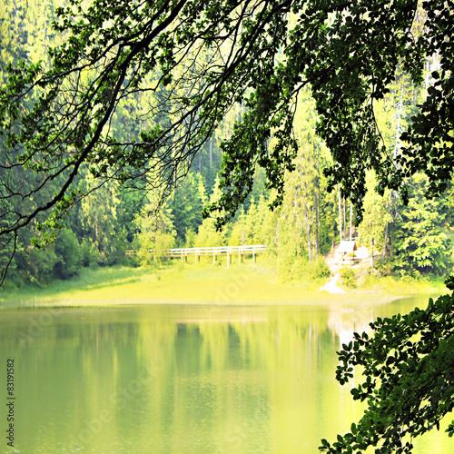 Fotobehang Zwavel geel landscape. Synevir lake in the Carpathians. Ukraine
