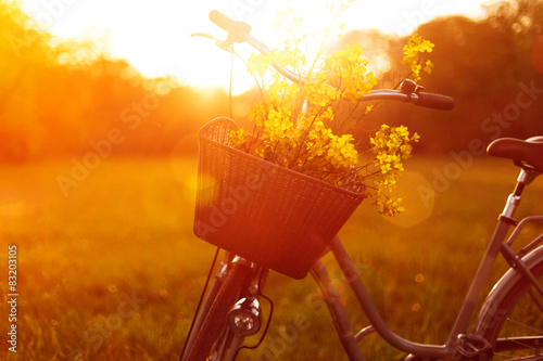 Deurstickers Fiets Flower Bike