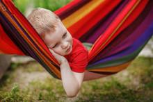 Beautiful Cheerful Little Boy Resting In A Hammock