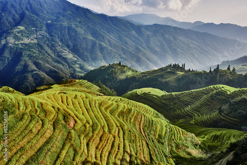 Autocollant pour porte Chine rice terraced fields Wengjia longji Longsheng Hunan China