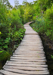 FototapetaPathway in Plitvice lakes park at Croatia