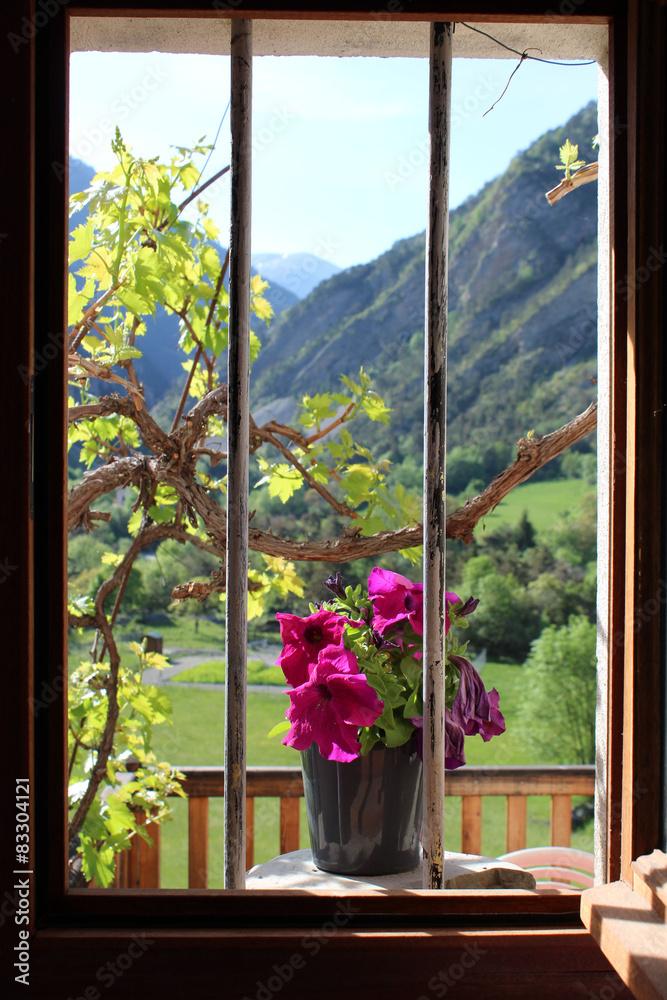 Okno Natura