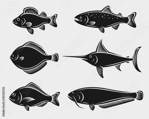 Obraz na plátne Fish set. Vector
