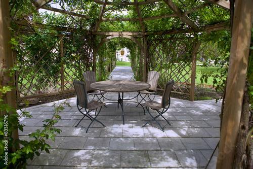 Fotografia  Rose garden