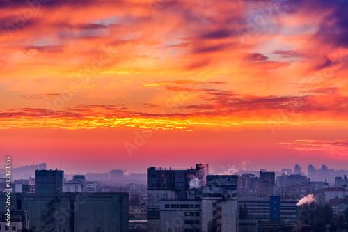 Poster Corail Orange sunset