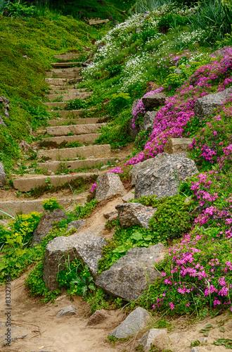 schody-w-ogrodzie-botanicznym