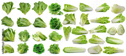 Cuadros en Lienzo cos fresh chinese cabbage and lettuce on white background