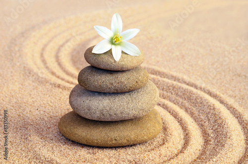 Tuinposter Stenen in het Zand Stone balance and flower on the sand