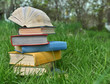 canvas print picture - Still life with pile of books lying on grass in garden