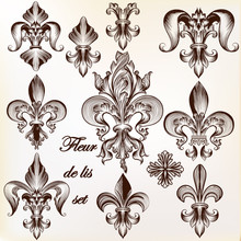 Collection Of Vector Royal Fle...