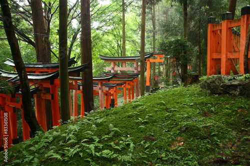 Red torii gates in the forest in Kyoto (Fushimi Inari)