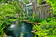 Decorative Pond With Ornamental Plants  And Green Garden