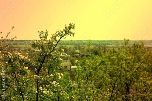 Fotobehang Zwavel geel landscape in village