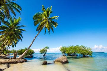 Fototapeta na wymiar Karibischer Traumstrand mit Palmen :)