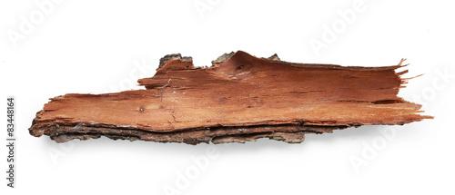 Bark tree Canvas Print