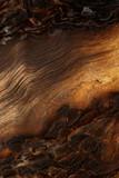 Ślady ognia na starym drewnie (zdjęcie z bliska) - 83455119