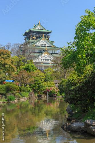 Foto op Plexiglas Japan Osaka castle, japan.