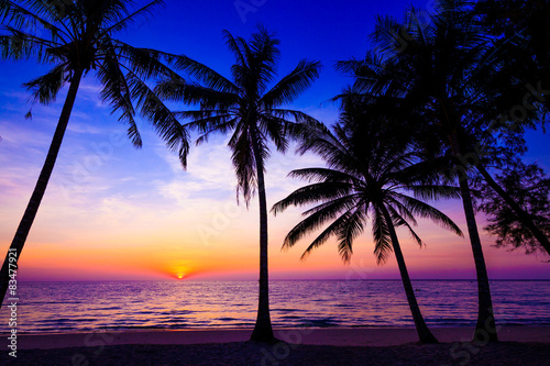 Foto auf Leinwand Tropical strand Beautiful sunset. Sunset over the ocean with tropical palm tree