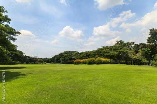 Beautiful park Tablou Canvas