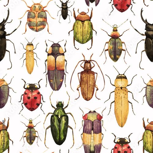 Obraz na płótnie Watercolor bug beetle pattern