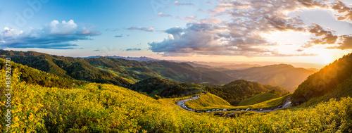 Plakat Krajobrazowy widok na panoramę pola Tithonia diversifolia o zachodzie słońca