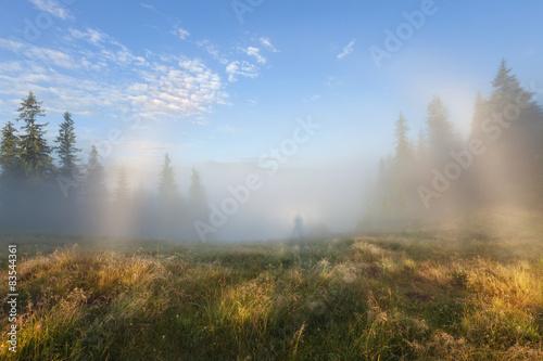 Foto auf Gartenposter Blau Foggy morning mountain landscape