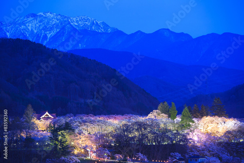 Fotobehang Donkerblauw 高遠城址公園の夜桜と南アルプス 長野県伊那市