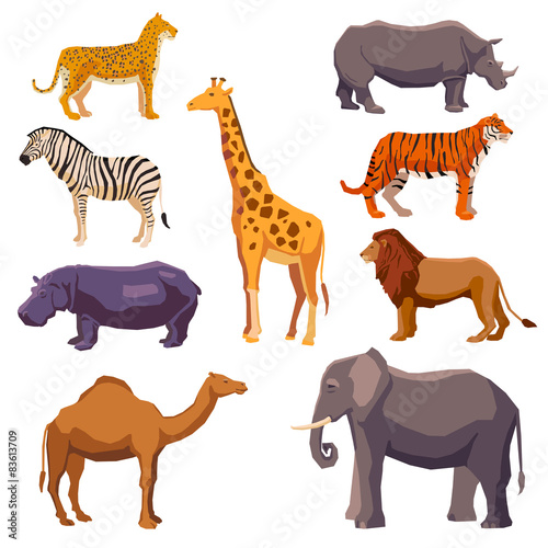 Photo Africa animal decorative set