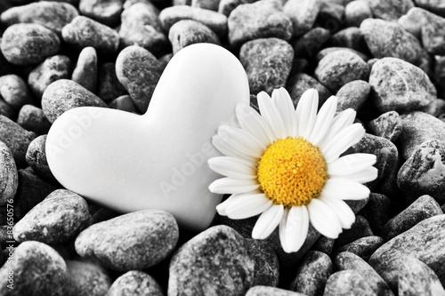 serce-i-kwiat