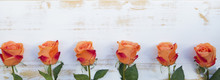 Orange Roses On White Rustic Wooden Background