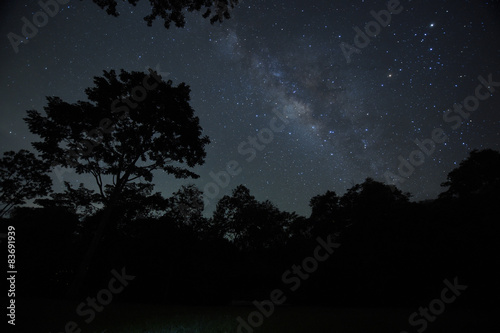 Keuken foto achterwand Nacht Night sky with the Milky Way over the forest and trees