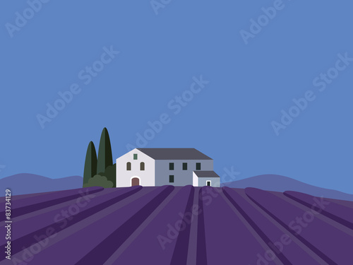 Provence landscape with lavender field, flat design, vector