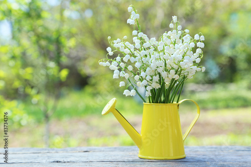 Obraz Lily of the Valley in watering can on grey wooden background, ou - fototapety do salonu