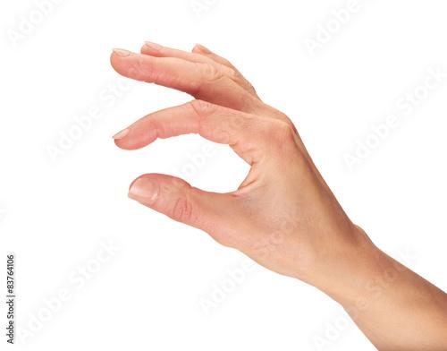 Foto  Female Hands