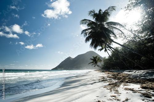 piasek-z-plazy-kokosowej