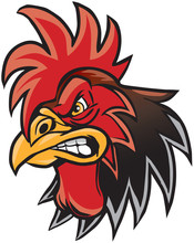 Angry Cartoon Rooster Mascot Head Illustration