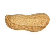 Macro Of Peanut Isolated On Wh...