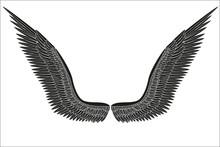 Sketch Open Black Angel Wings. Vector.