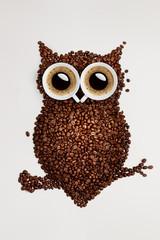 Fototapeta kawowa sowa