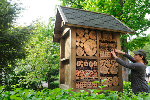 insect hotel in garden
