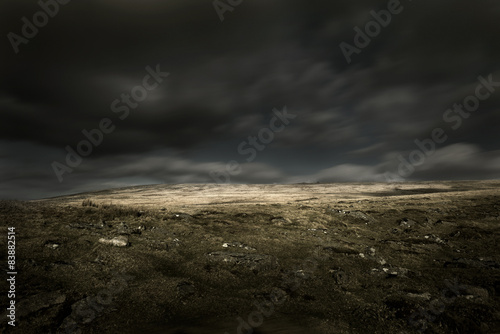 Deurstickers Zwart Wild Landscape