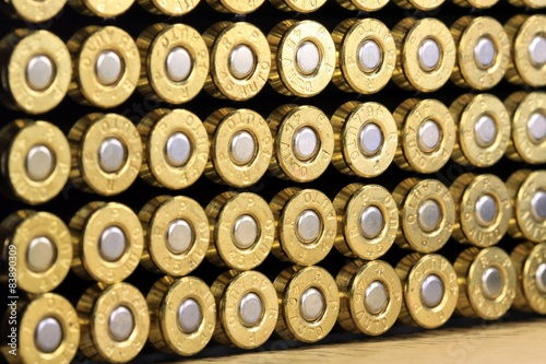 Fényképezés A row of 45 caliber ammunition copper plated bullets